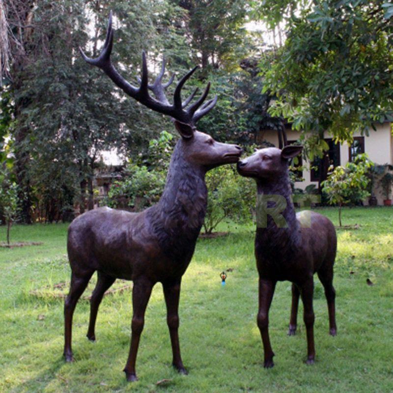 Deer(31).jpg