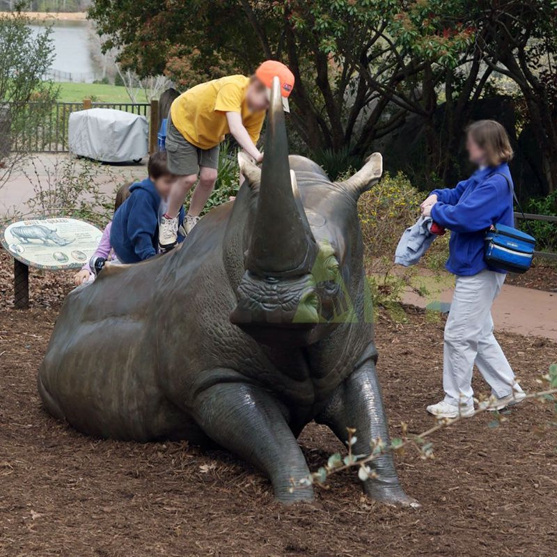 Rhino(18).jpg